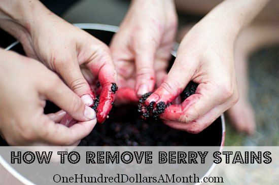 How to Remove Berry Stains from Your Hands - One Hundred Dollars a Month |  Berry stain, Fruit stain, Juice stain removal