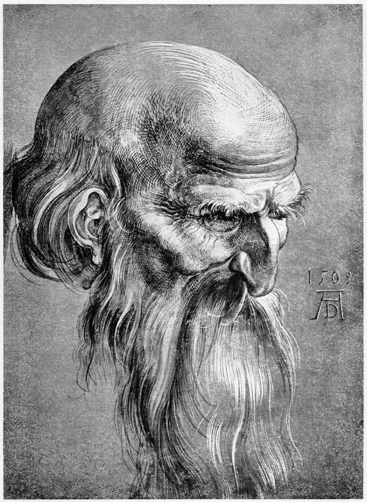 Famous Pencil Drawing Artists : famous, pencil, drawing, artists, Pencil, Drawings, Famous, Artists, Pencil,, Drawing, India,, Artist,, Albrecht, Dürer,, Durer