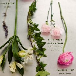 The Language Of Flowers I Love The Nod To The Victorian Tradition Of Using Flowers To Convey Meaning Language Of Flowers Flower Meanings Amazing Flowers