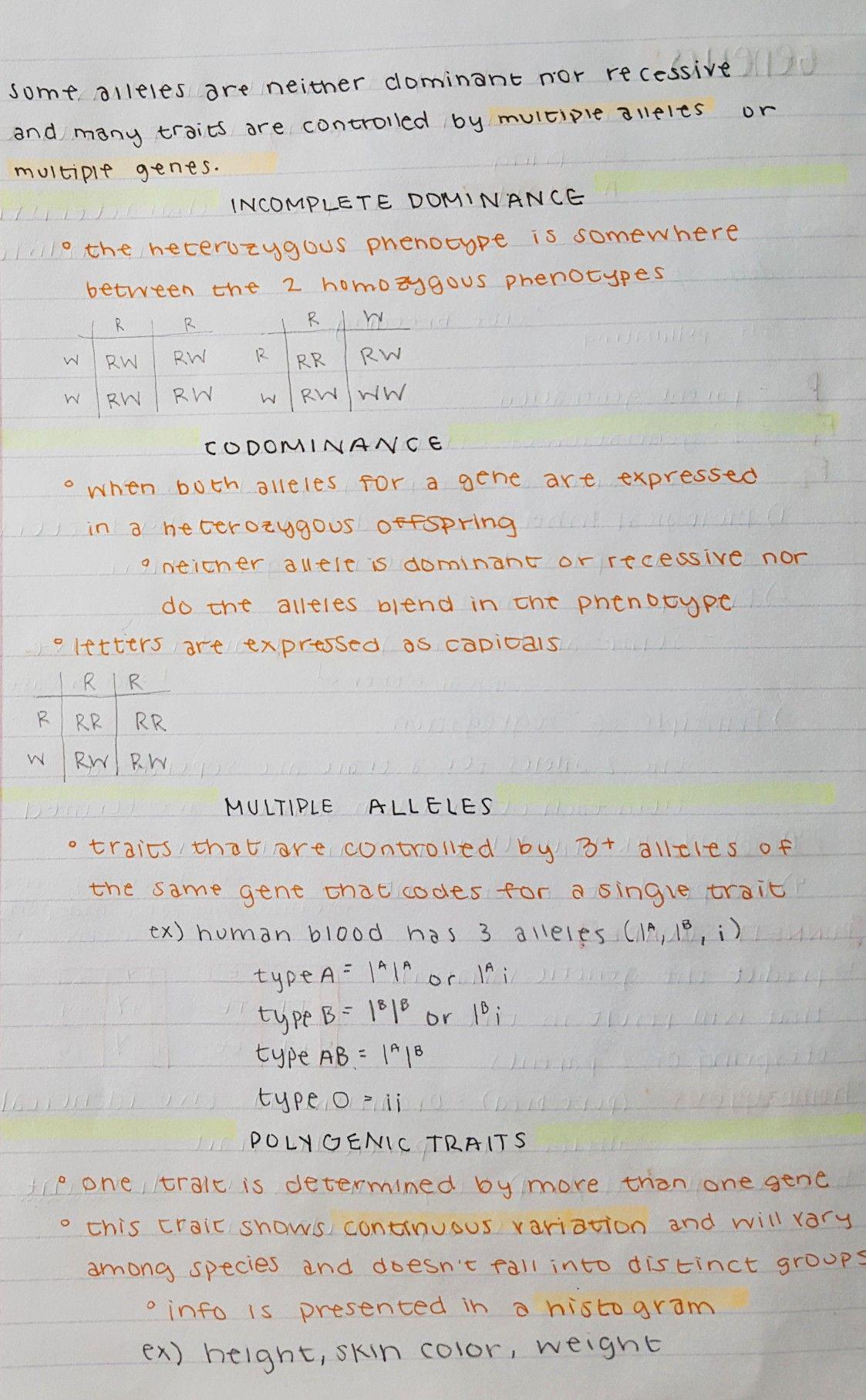 Alleles Dominance Codominance Etc Dominant Genetics Notes