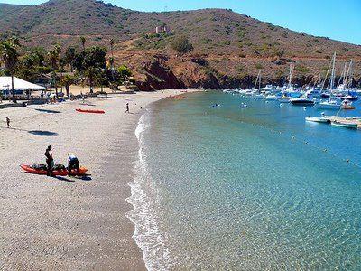 Avalon California Santa Catalina Island Beach Pictures United States