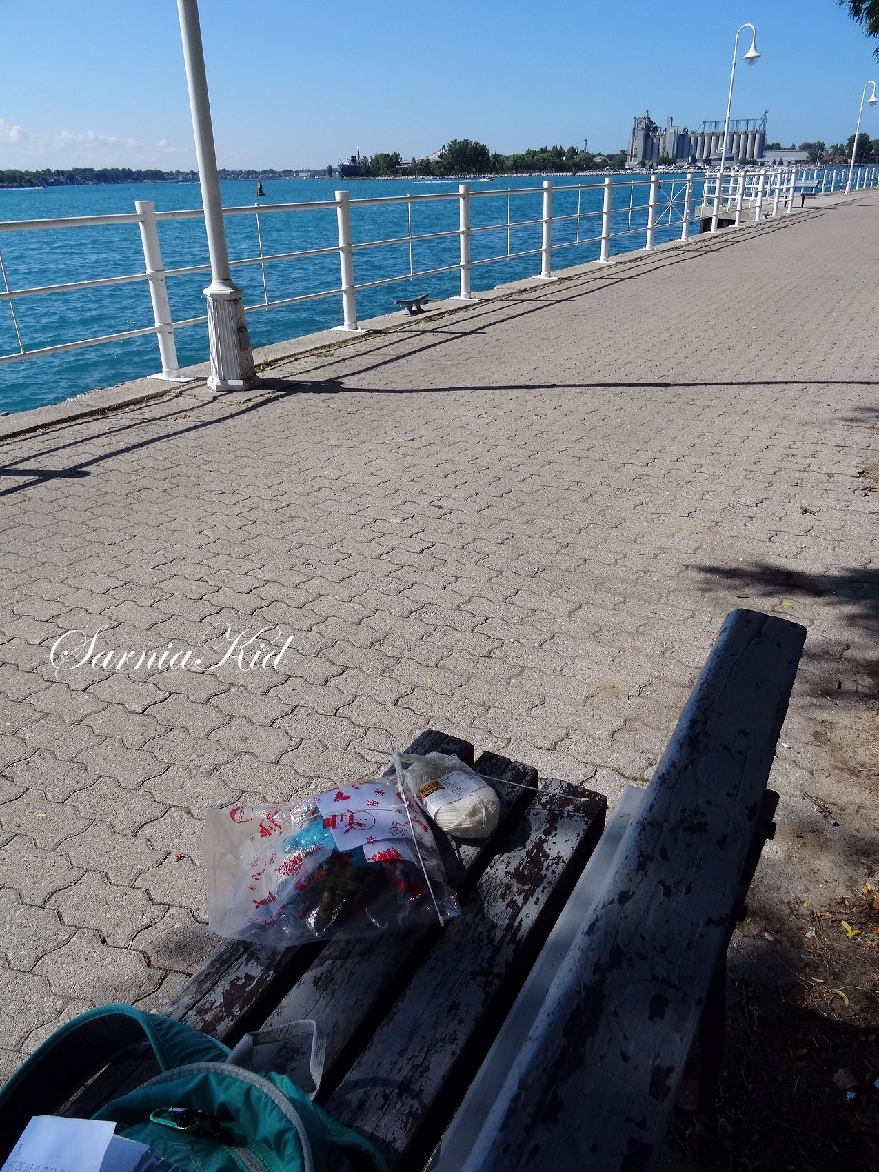 Knitting by the St. Clair River while waiting for my ride home!