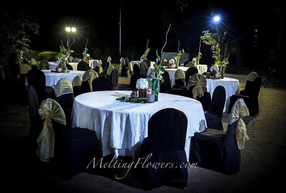 Jungle Themed Wedding Indian Theme Wedding Decorations Reception