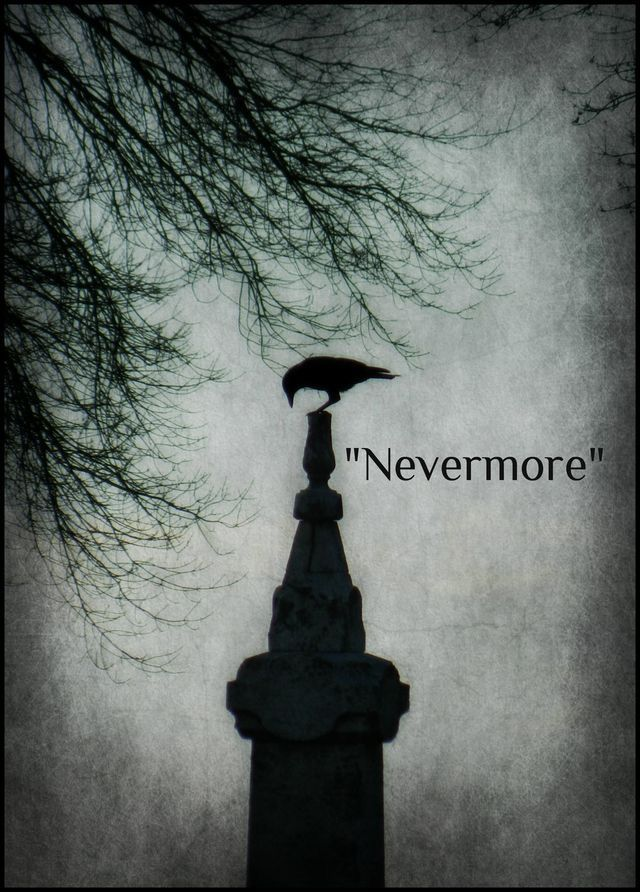 Nevermore The Raven By Edgar Allan Poe