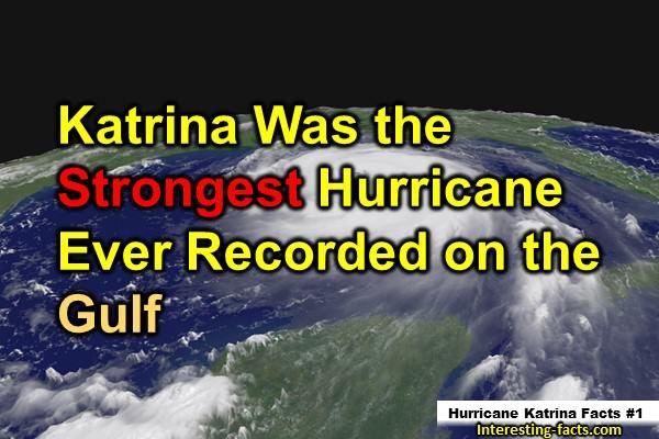 Hurricane Katrina Facts # 1 | Yeah! | Pinterest | Hurricane ...