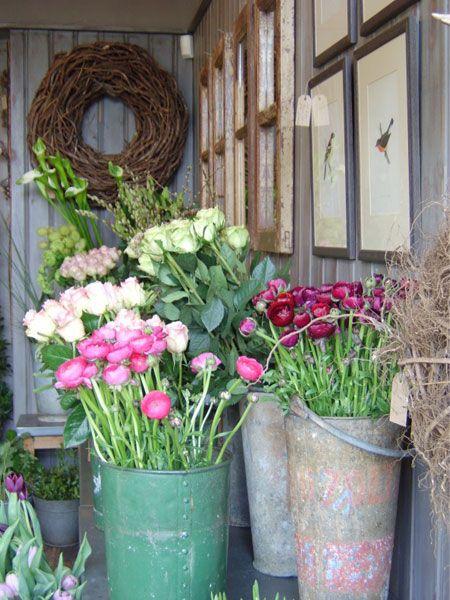 Pin De Rosita Diorio En Maravillosas Flores Jardines