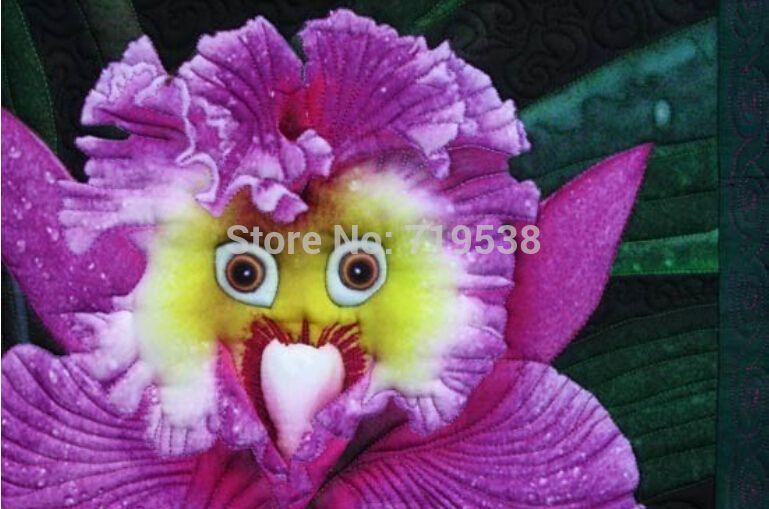 Orquideas Raras Compra orquídeas de color online al por mayor de china ...