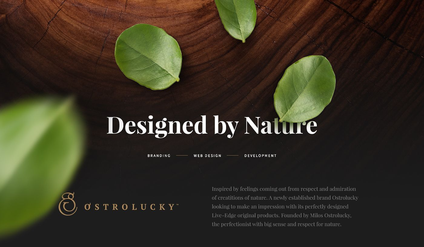 Brand design & Web design for newly established brand of luxury live-edge…