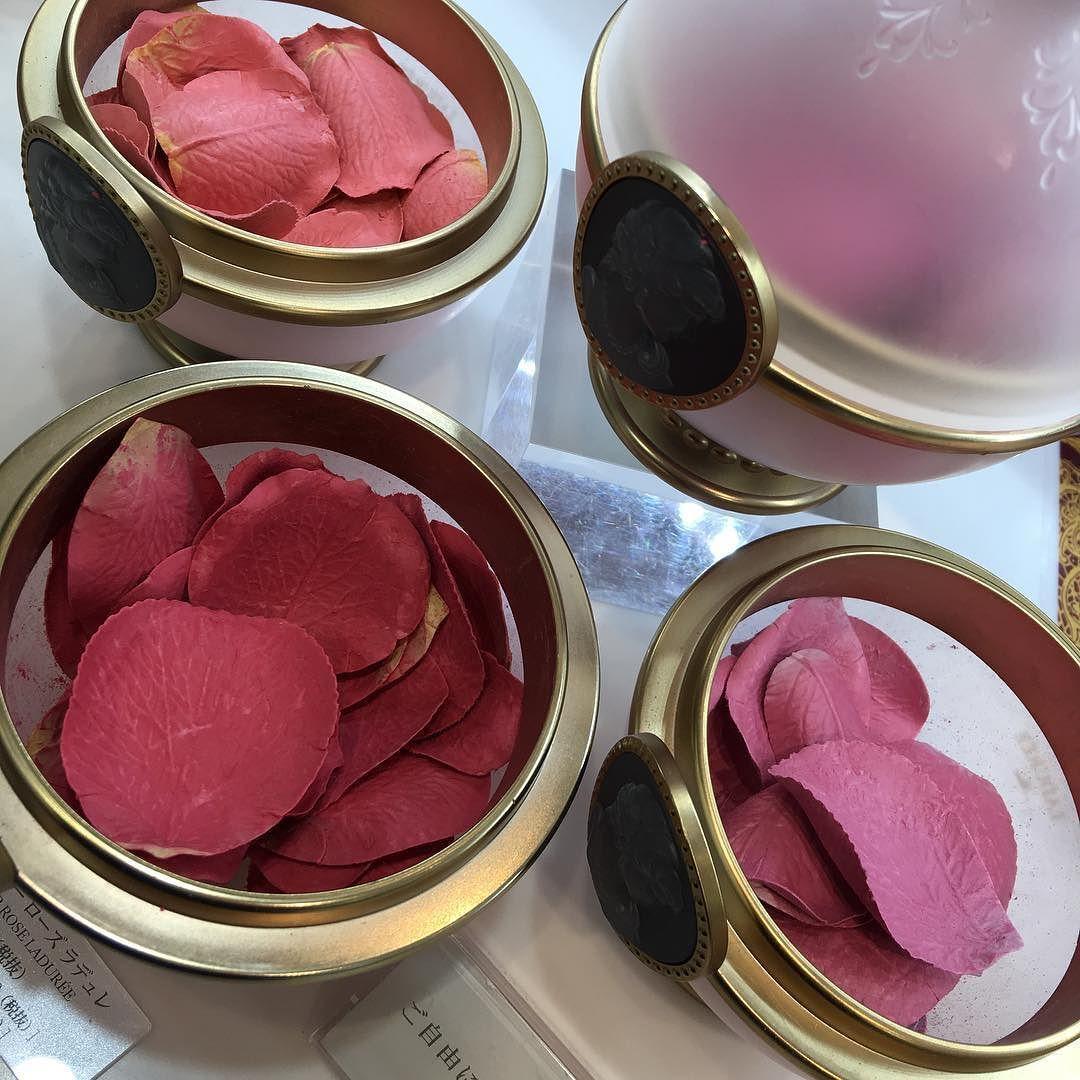 Laduree Rose Blush Makeup Cosmetics Aesthetic Beauty Laduree