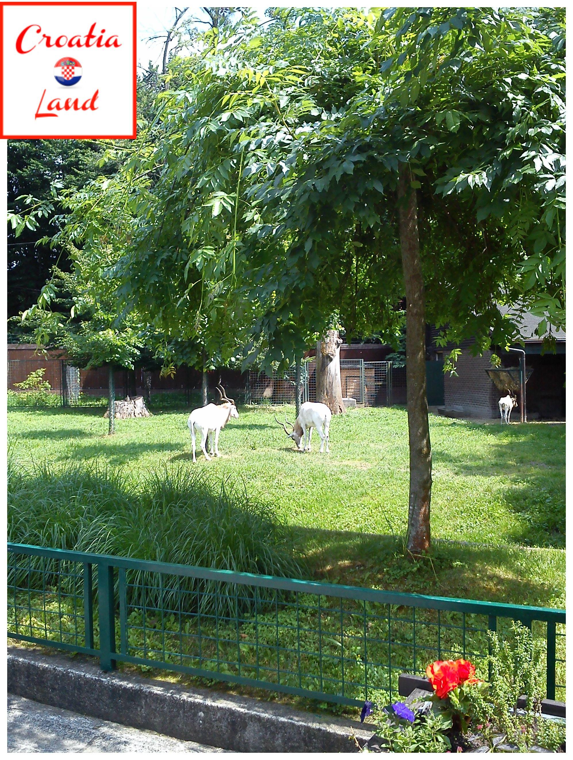 Zoo Zagreb City Of Zagreb Zagreb Capital City