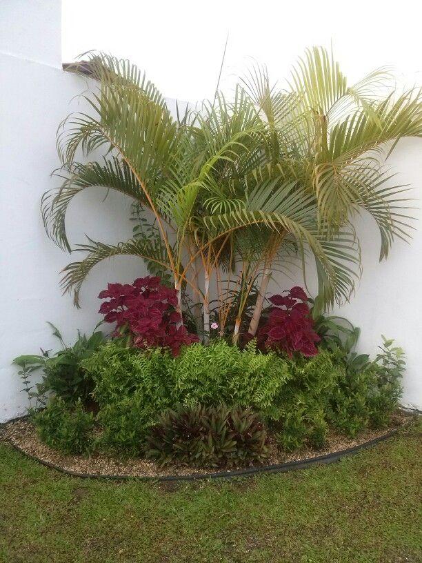 Jardin en esquina con plantas verdes y rojas houses for Jardines verdes