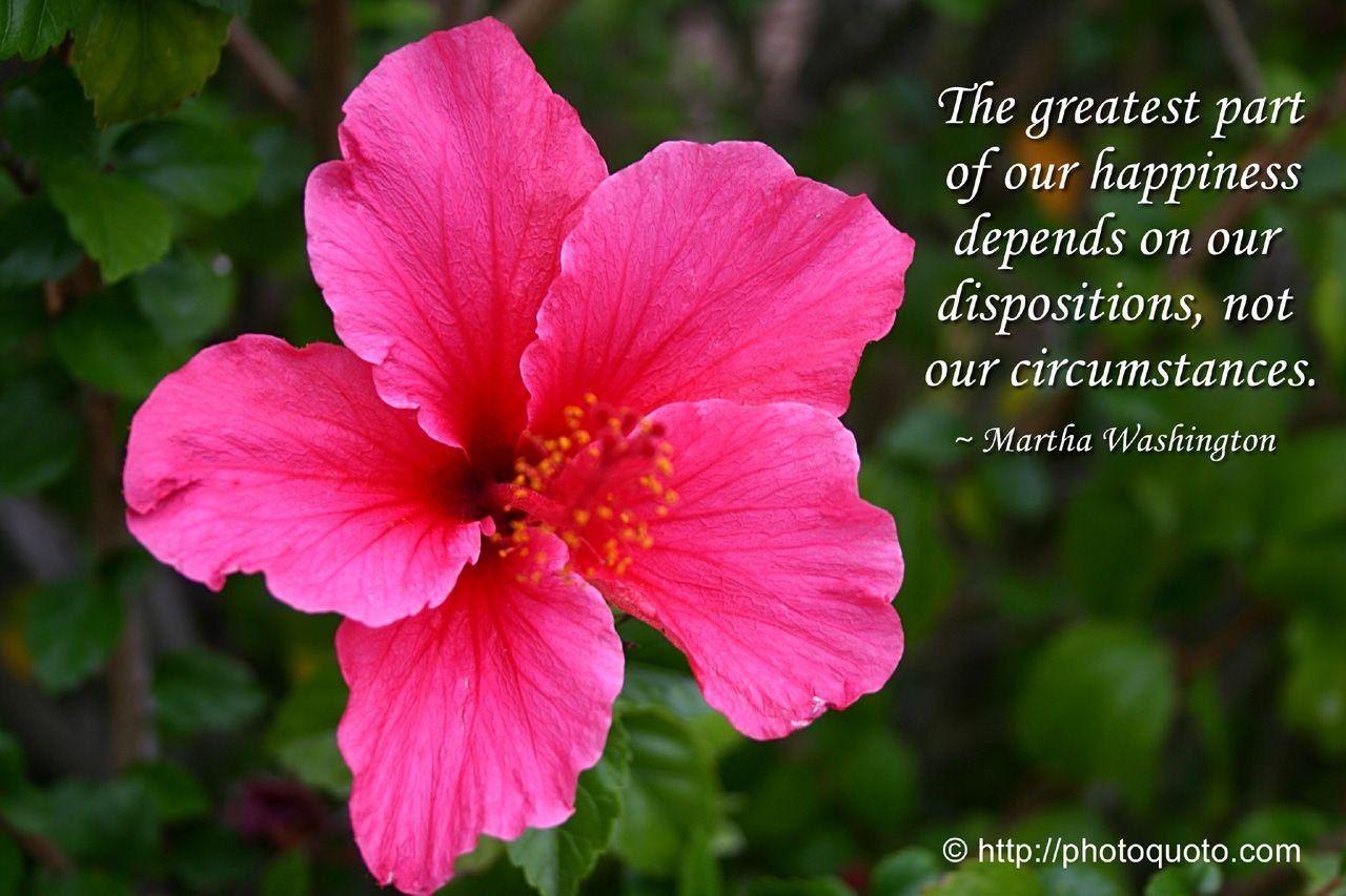 Sayings Quotes Martha Washington Photo Quoto Martha Washington Flower Quotes Happy Quotes