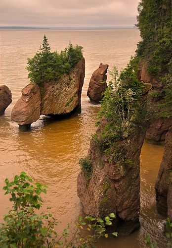 Hopewell Rocks - Flower Pot Rocks at High Tide - New Brunswick Canada by Marcus Frank on Flickr. & Hopewell Rocks - Flower Pot Rocks at High Tide - New Brunswick ...