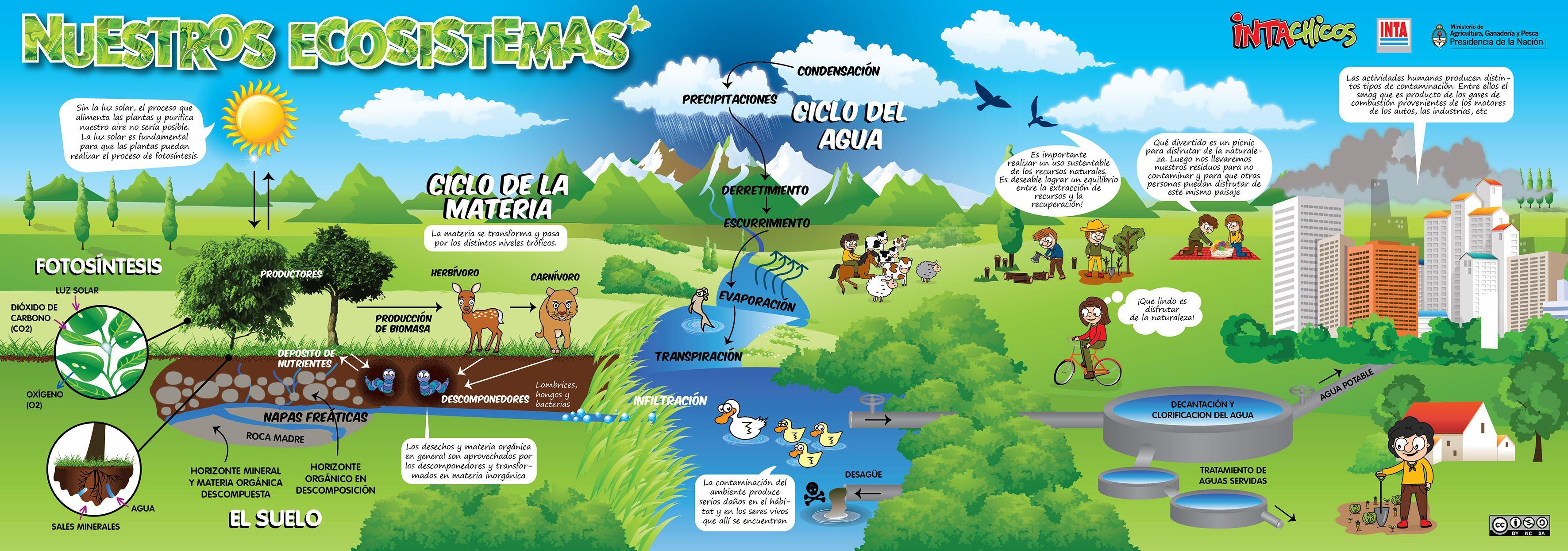 Nuestros ecosistemas (Ecosistema)