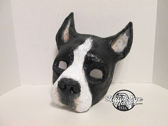 adorable terrier black and white costume mask show dog costume mask masquerade Boston Terrier American Gentleman AKC
