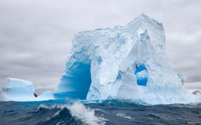 رحلة مصورة إلى القارة المتجمدة South Georgia Island Antarctica Antarctica Iceberg