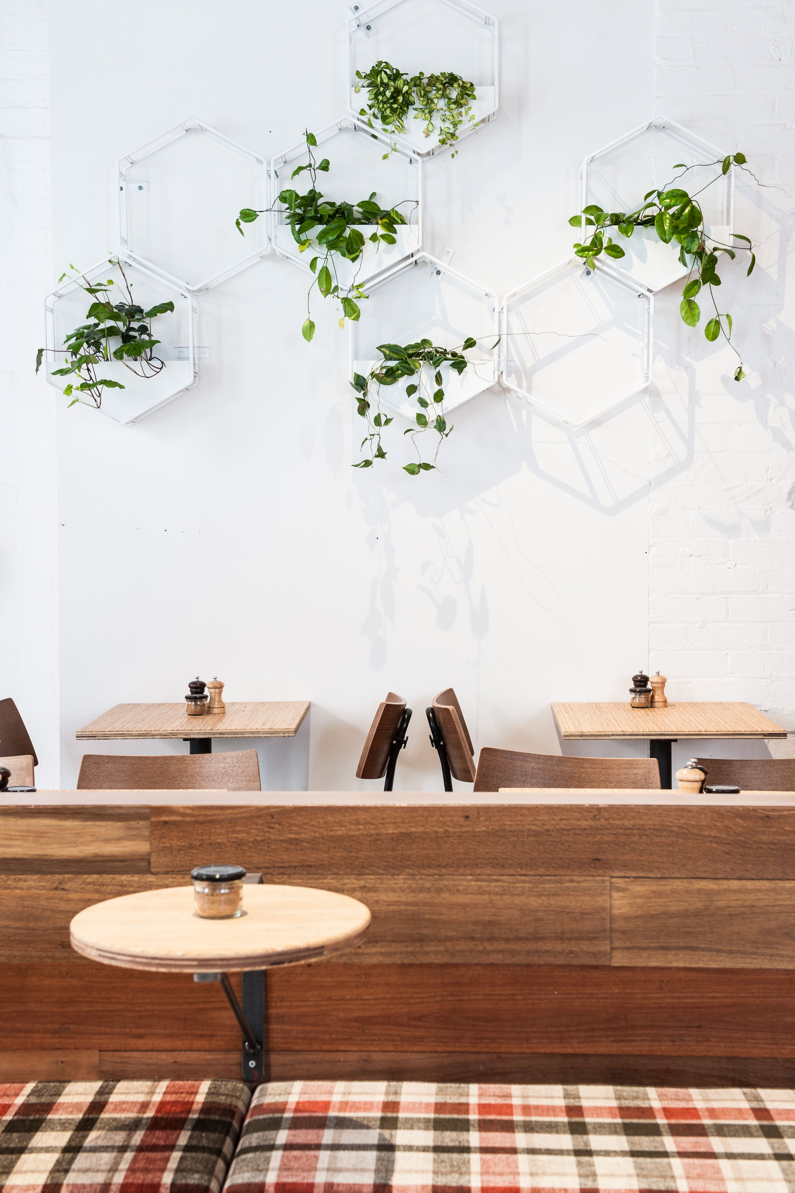 Wabe Modular Wall Planter System By Oblica And Glasshaus Wall Planter Modular Walls Design