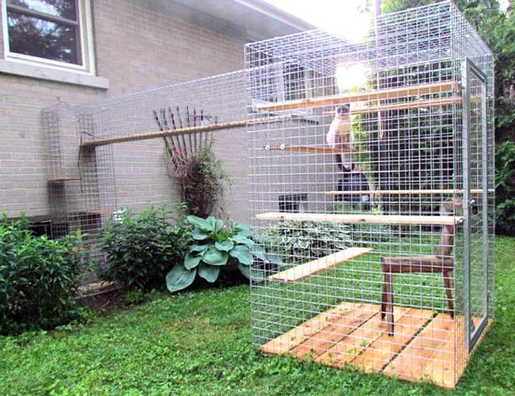 Cozy Catio Design Ideas For Your Lovely Cats: Cute Catio With Climbing  Ledges Design Used Wooden Material In Minimalist Decoration For Outdoor  Home Space ...