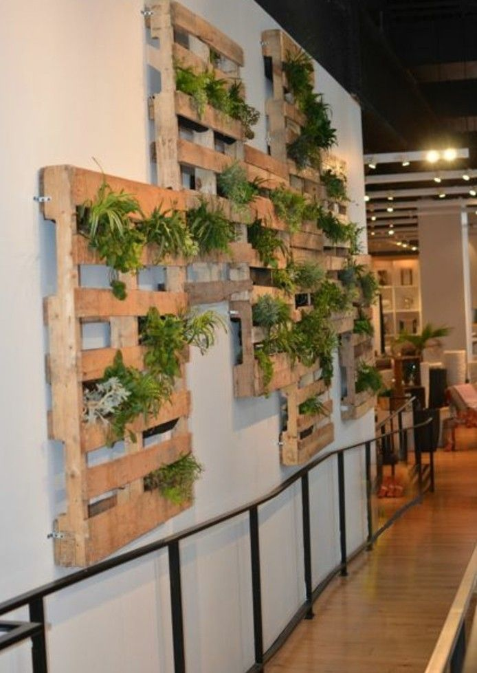 Le mur végétal en palette - idées originales pour un jardin vertical