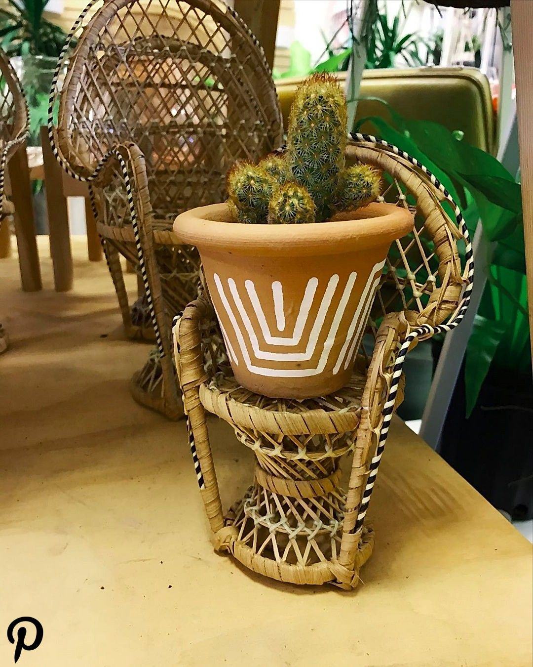 Look how fcking adorable  Now I can sit on the porch with my cacti  Only at shopplantbabe Look how fcking adorable  Now I can sit on the porch with my cacti  Only at shop...