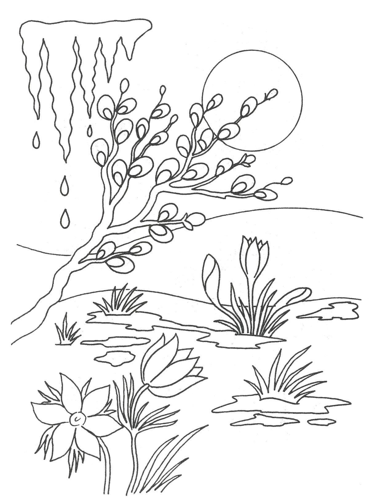 Раскраска весна | Раскраски, Весна, Весенние поделки