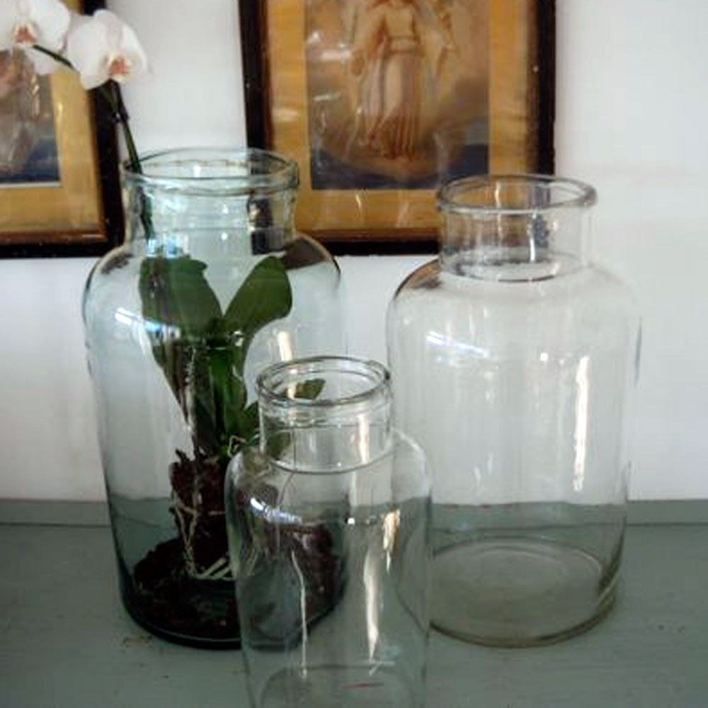 glass terrarium jar large hungarian pickle vase - Large Glass Jars