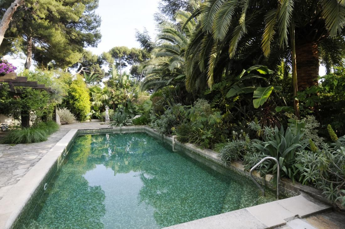 pool landscape surrounded by greenery dream home pinterest