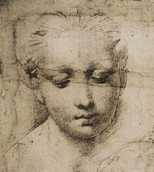 Madonna And Child Drawing Detail Raphael Portrait Drawing