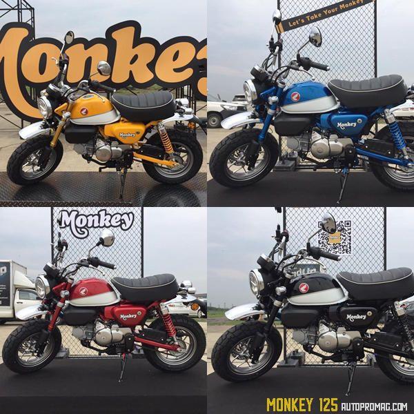 2019 Honda Monkey 125 Std Scrambler Cafe Revealed World Wide