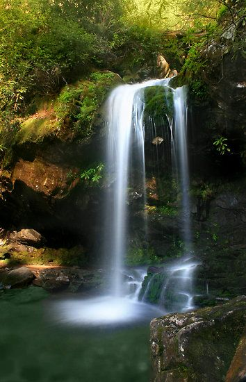 Grotto Falls Great Smoky Mountains Nat L Park Photo By
