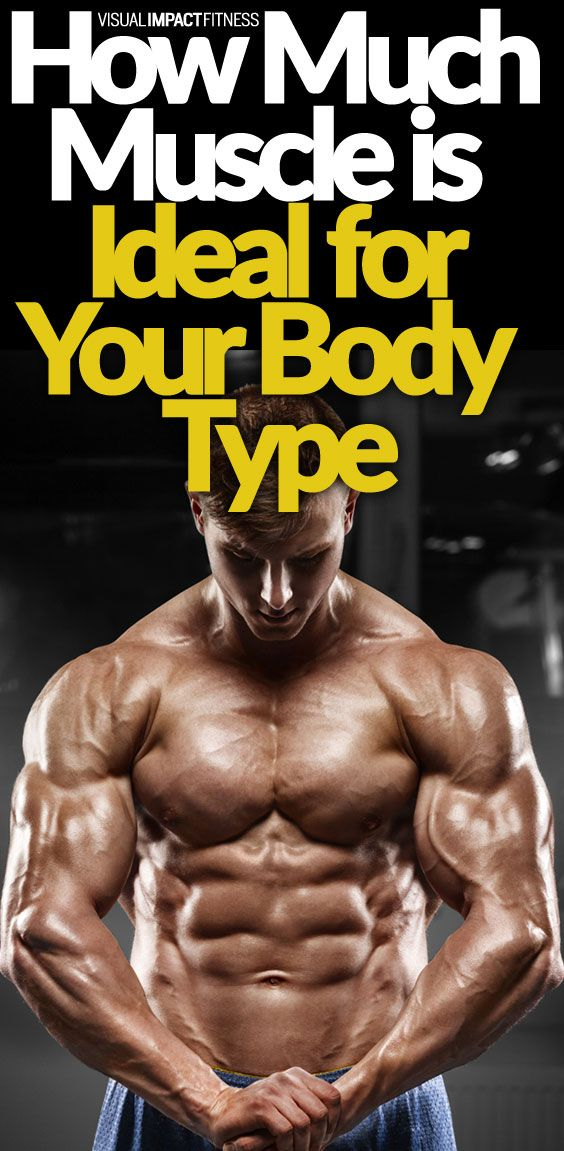 How Much Muscle is Ideal for Your Body Type | Gain muscle, Gain and ...
