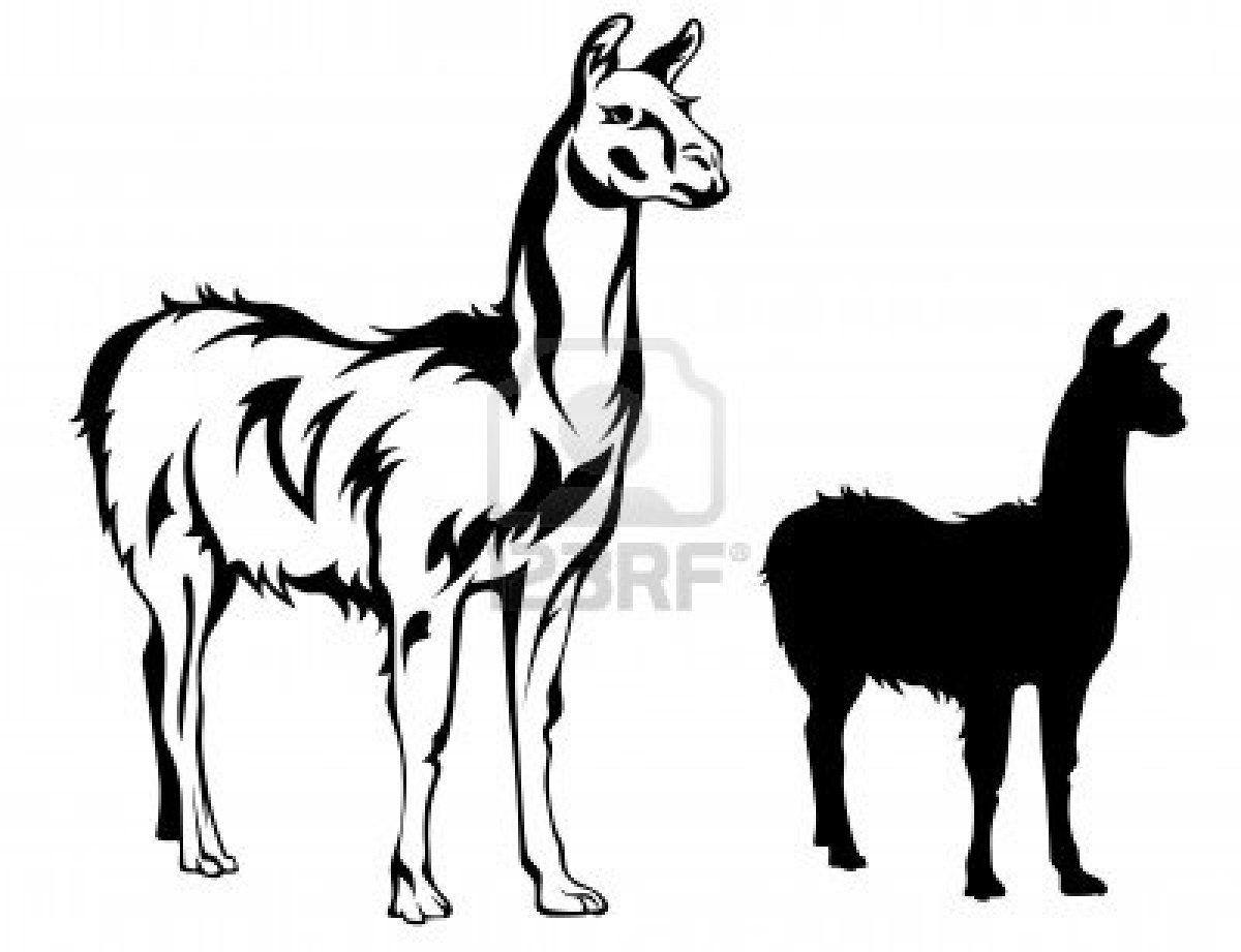 llama vector illustration Stock Photo | Zen tan Animals ...