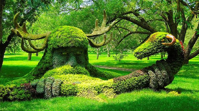 17 Best images about Garden Topiary art – Plants for Garden