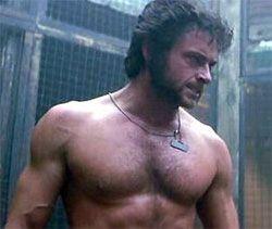 Mutton Chops Wolverine