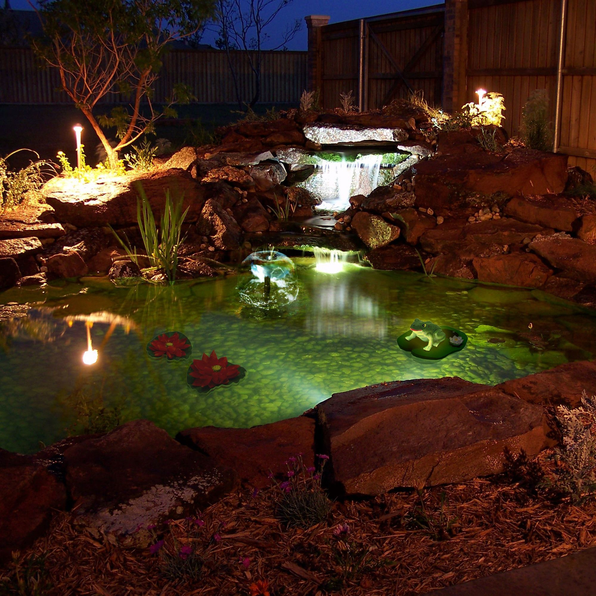 Love! Algreen Pond Kit with Solar Lighting | Wayfair | Ponds