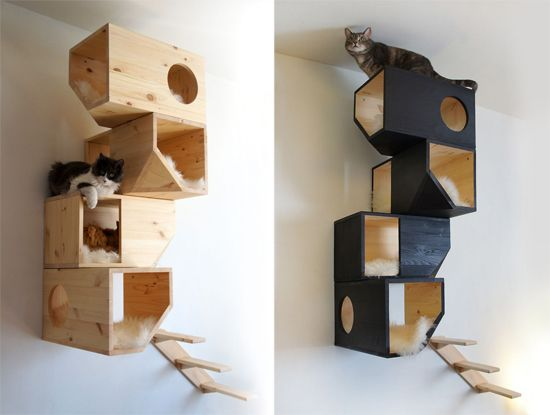 Catissa cat house modern cat tree cat entertainment for Designer cat beds uk