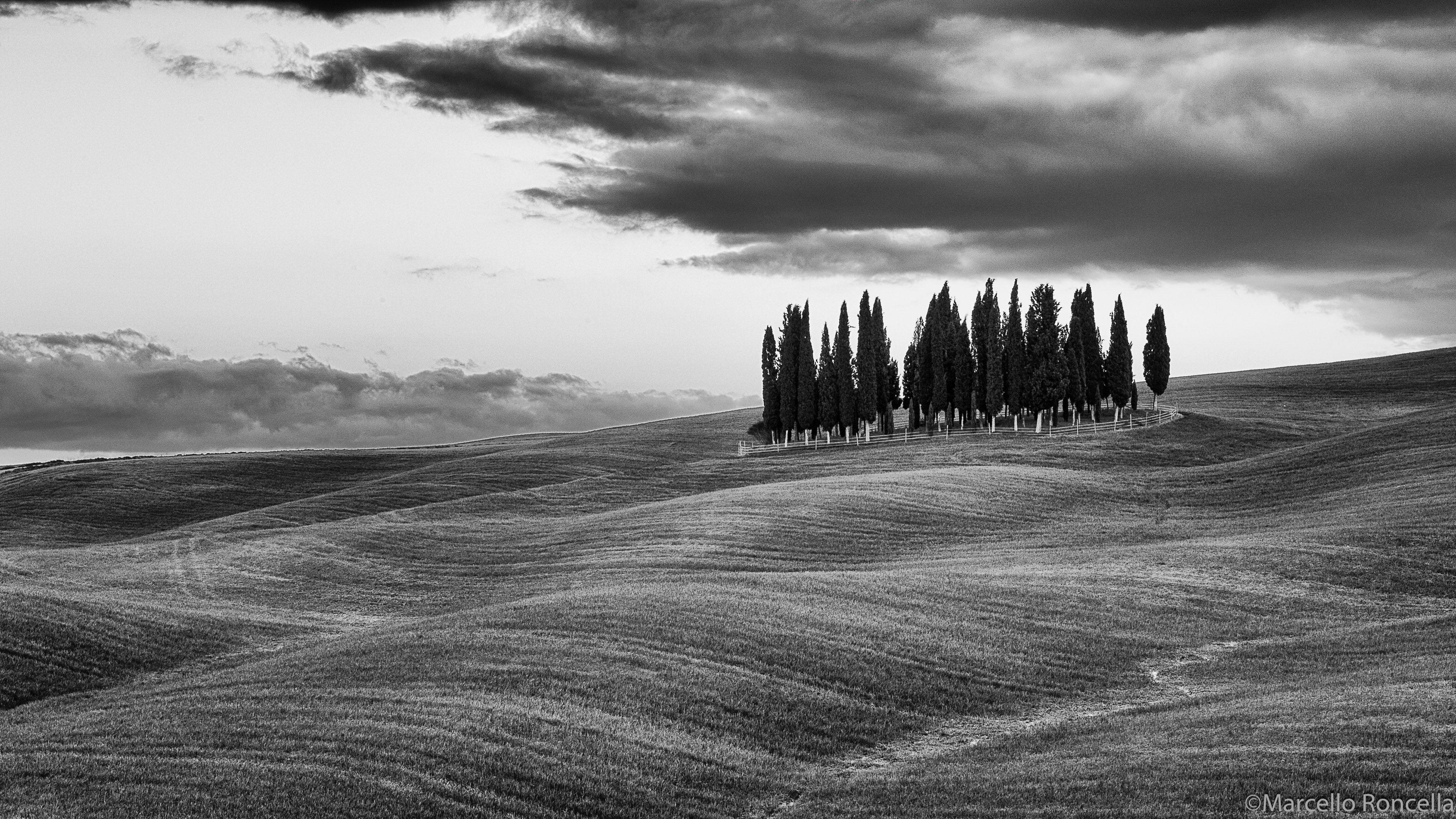 Fotografie Belle In Bianco E Nero Bianco E Nero Dopo La Pioggia