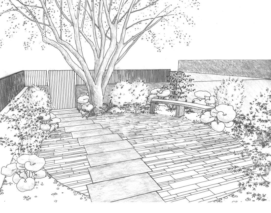 менее, картинки красивого сада карандашом меня это