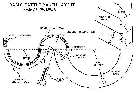 cattle corral designs      like the  u0026quot s u0026quot  part