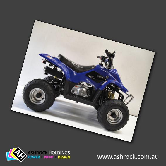 Meerkat 50-C4 Kids Quad Bike 50cc (Blue) #ashrock #zuma #atv