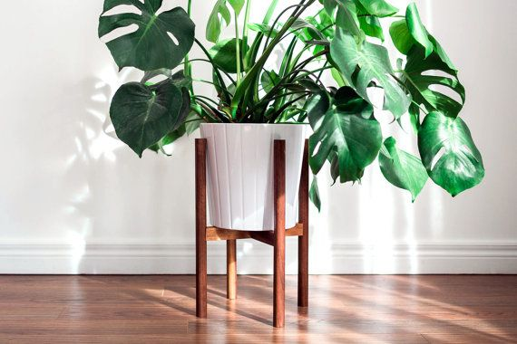 Mid Century Modern Plant Stand Hand Made In Canada Walnut Wood
