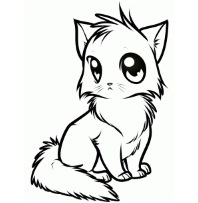 Cat Line Art By Ask Wolf Ciel On Deviantart Cat Drawing Tutorial Cartoon Drawings Animal Drawings