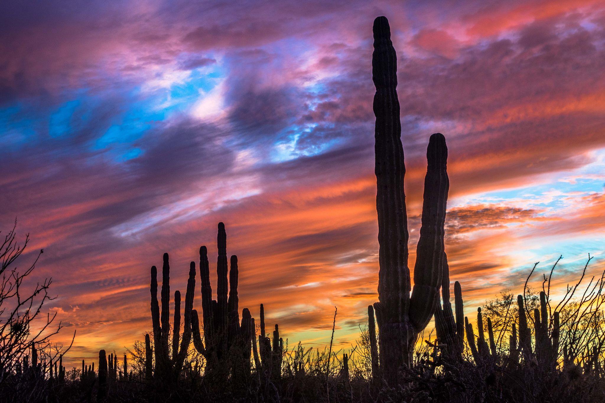 Wild-camping in the desert near Ciudad Insurgente, Baja ...