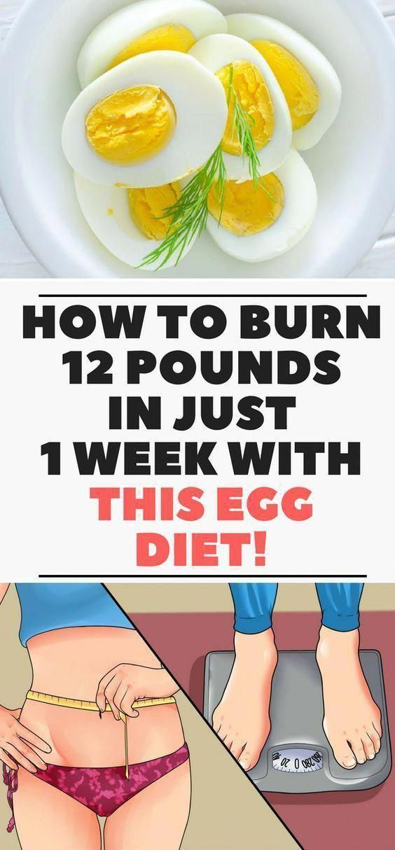 Slimming down Together with the Boiled Egg Diet plan #OneEggADayDiet #boiledeggnutrition Slimming down Together with the Boiled Egg Diet plan #OneEggADayDiet #boiledeggnutrition Slimming down Together with the Boiled Egg Diet plan #OneEggADayDiet #boiledeggnutrition Slimming down Together with the Boiled Egg Diet plan #OneEggADayDiet #boiledeggnutrition