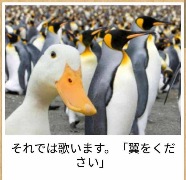 ニュー速チャンネル