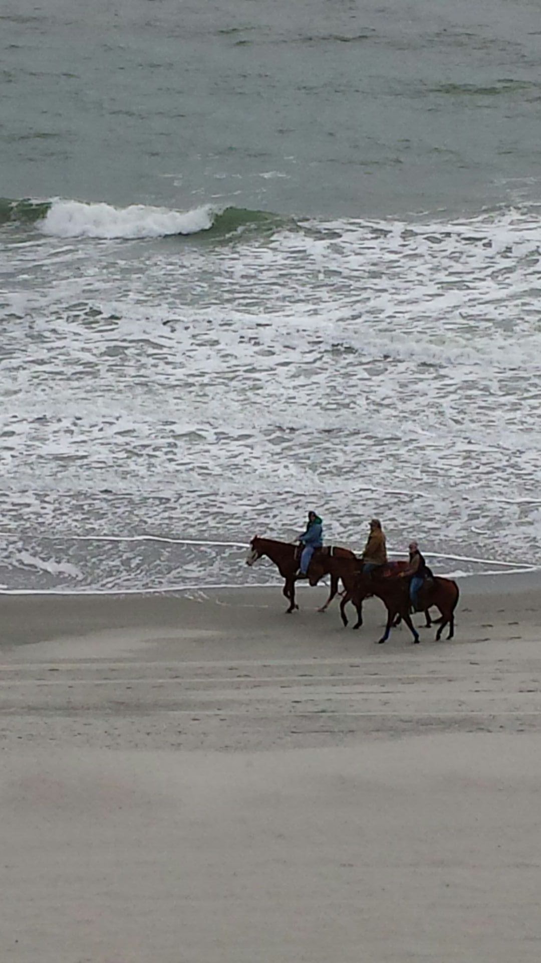 Horse riders at Myrtle Beach