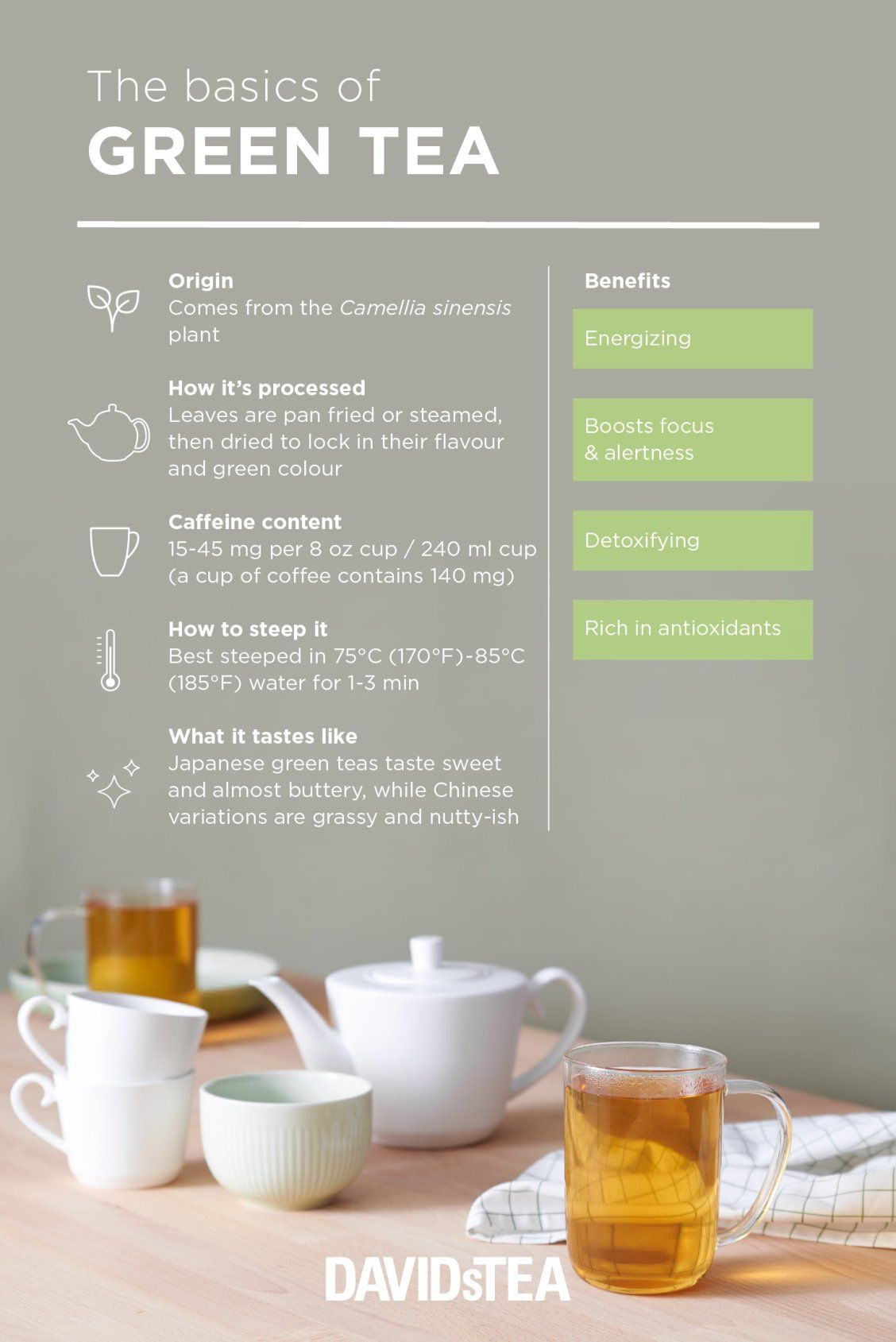 Photo of Tea 101: What is Green Tea? – Steep Thoughts