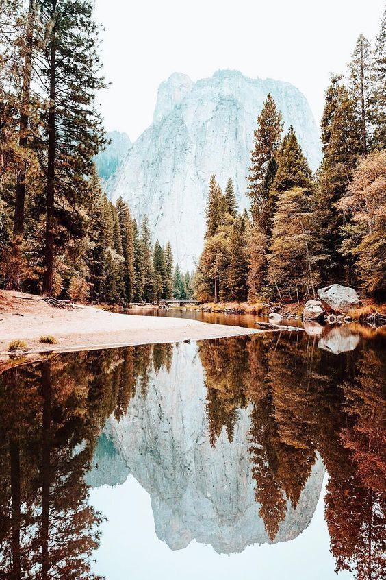 #fotografía #mundo #paisaje #naturaleza #río #bosque #montañas