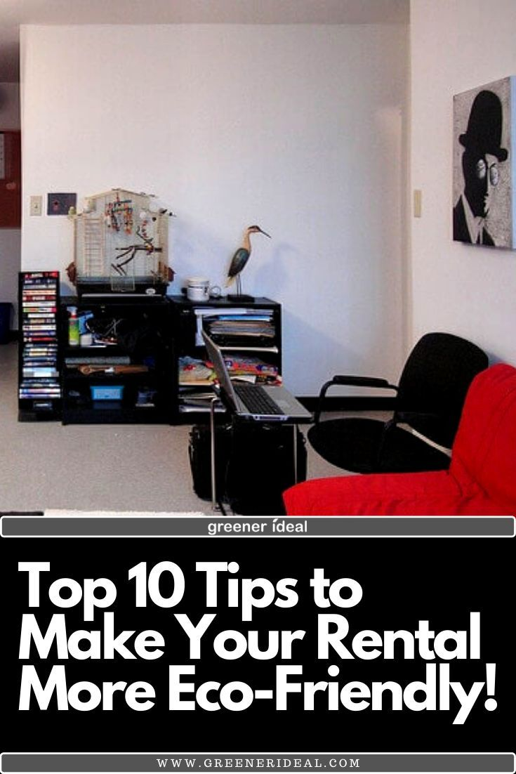 10 tips to make your rental more ecofriendly eco