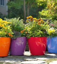 find this pin and more on planters garden pots by arizonapottery